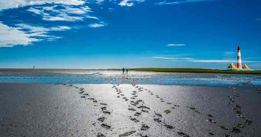 North Sea - mudflat hiking