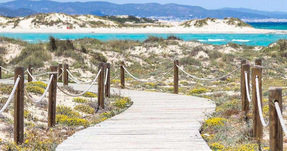 Formentera - Road to the white sand beach
