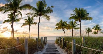 Key West - Beautiful palm tree beaches