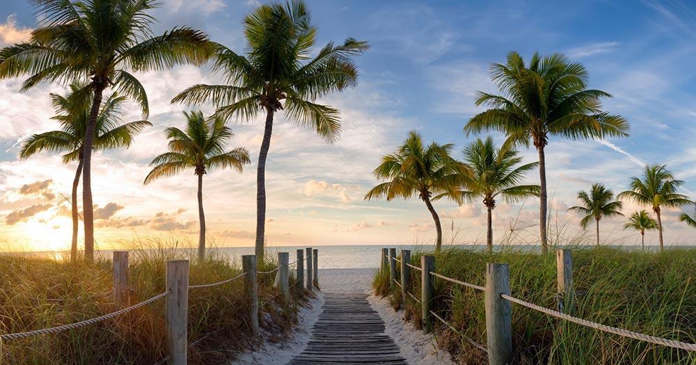 Key West - Beautiful palm tree beaches