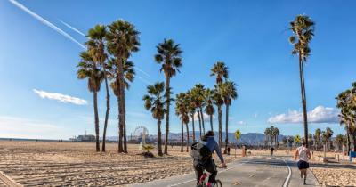 Santa Monica - Sport under a palm tree