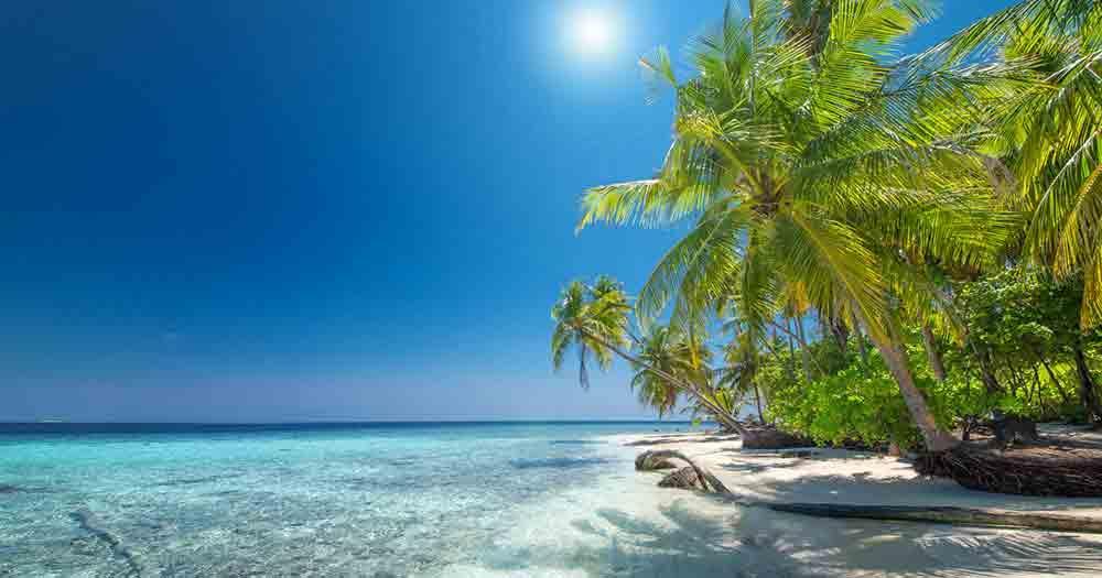 Hawaii - View of the beautiful sea